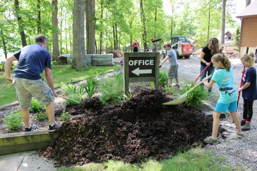 Mulching the office